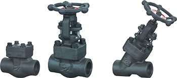 3-035-Rv-1_Forged-_Valves